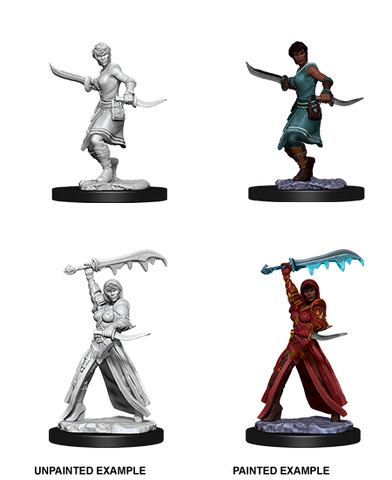 WZK73831: Female Human Rogue: D&D Nolzur's Marvelous Unpainted Miniatures (W10)