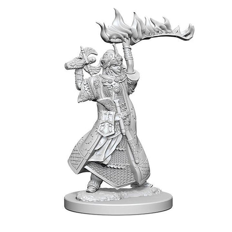 WZK72601 Human Female Cleric (2 minis) - Pathfinder Deep Cuts