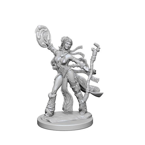 WZK72604 Human Female Sorcerer (2 minis) - Pathfinder Deep Cuts