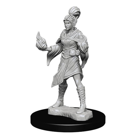 WZK72606 Elf Female Sorcerer (2 minis) - Pathfinder Deep Cuts