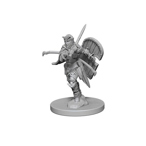 WZK72607 Human Female Paladin (2 minis) - Pathfinder Deep Cuts