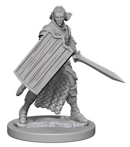 WZK72608 Elf Male Paladin (2 Minis) - Pathfinder Deep Cuts