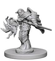 WZK72622 Elf Male Wizard (2 minis) - Nolzur's Marvelous Minis