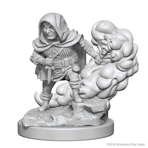 WZK72626 Halfling Male Rogue (2 minis) - Nolzur's Marvelous Minis
