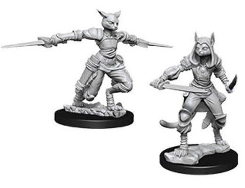 WZK73708: Female Tabaxi Rogue: D&D Nolzur's Marvelous Unpainted Miniatures (W9)