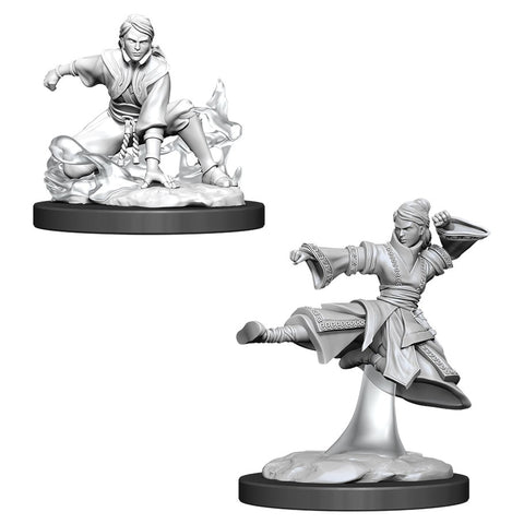 WZK90008: Female Human Monk: D&D Nolzur's Marvelous Unpainted Miniatures (W11)