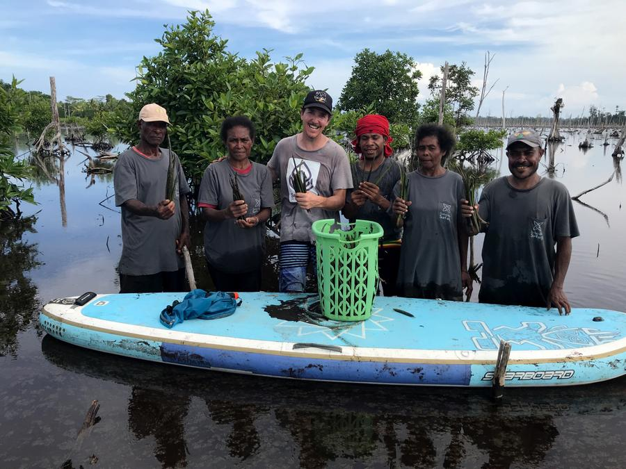 sea trees indonesia mangrove restoration blue carbon project