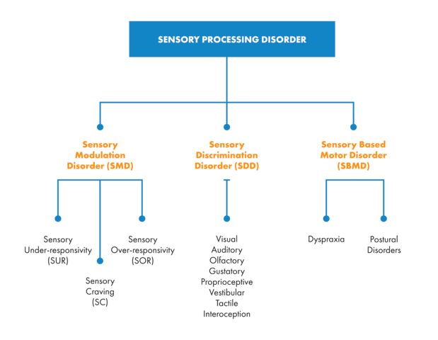 Is Sensory Processing Disorder Real >> The Ultimate Guide To Sensory Processing Disorder Harkla Blog
