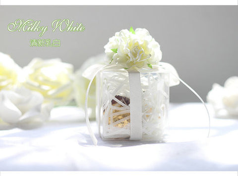 Clear Wedding Favour Boxes with Coloured Ribbon (White)