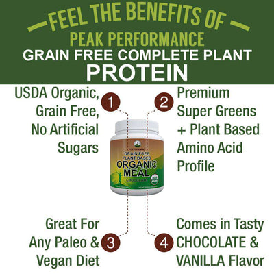Organic Meal Replacement Powder (Chocolate)