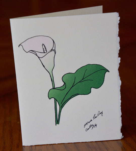Cards, Calla Lily  -5 cards per pack