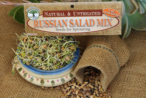 RUSSIAN SALAD MIX - Sprouting Seeds - Lens - Natureal & Untreated - Microgreens