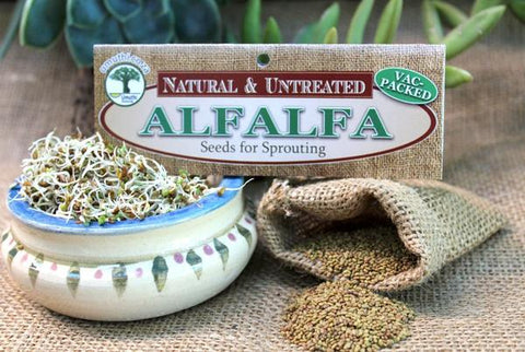 Alfalfa sprouting seeds Botanical name: Medicago Sativa