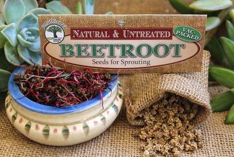 Beetroot seeds Botanical name: Beta Vulgaris