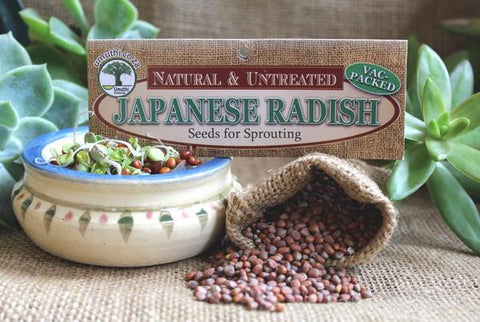 Japanese radish seeds Botanical name: Raphanus Sativus