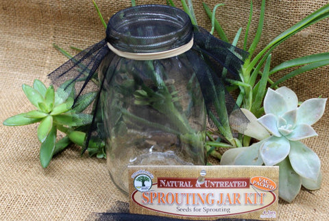 SPROUTING JAR KIT – FOR 4 JARS
