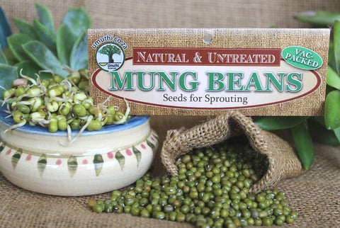 Mung beans Botanical name: Vigna Radiata