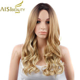 "26"" - 1 Piece   Ombre Synthetic Wig"