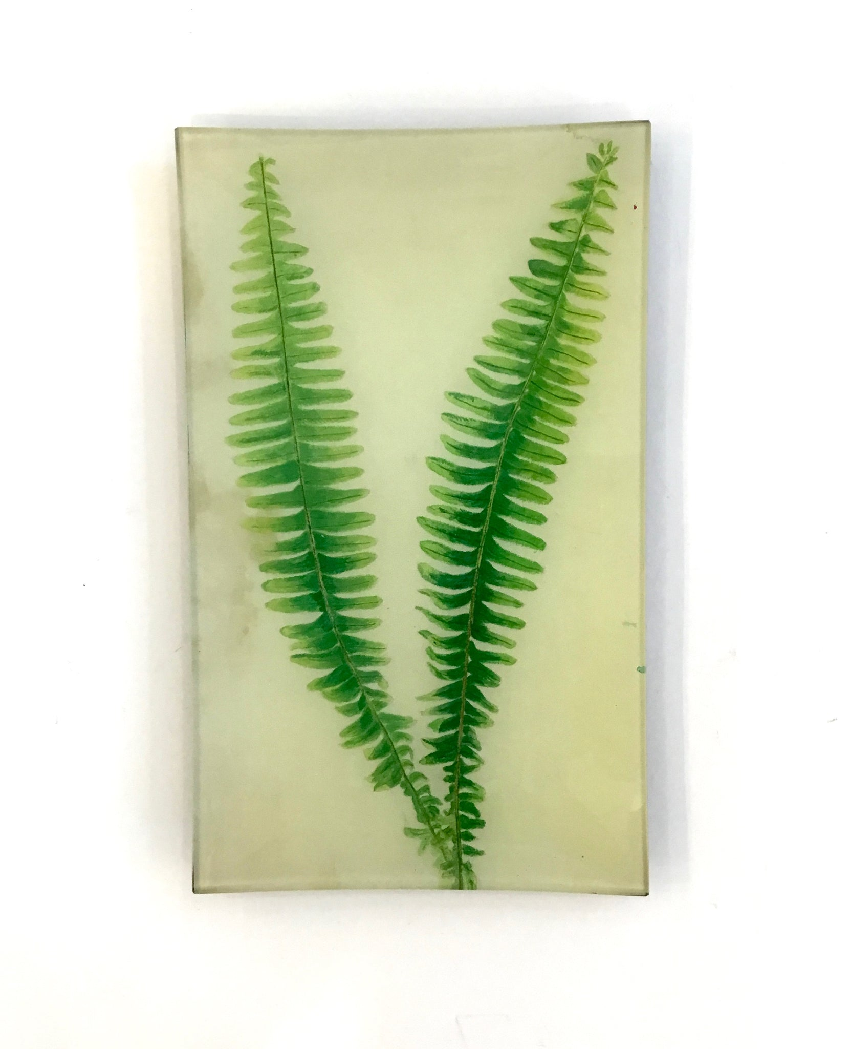 John Derian Painted Fern Tray