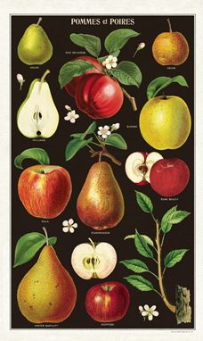 Cavallini Apple Tea Towel