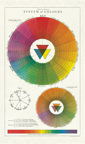 Cavallini Color Wheel Tea Towel
