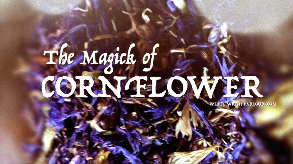 The Magick of Cornflower