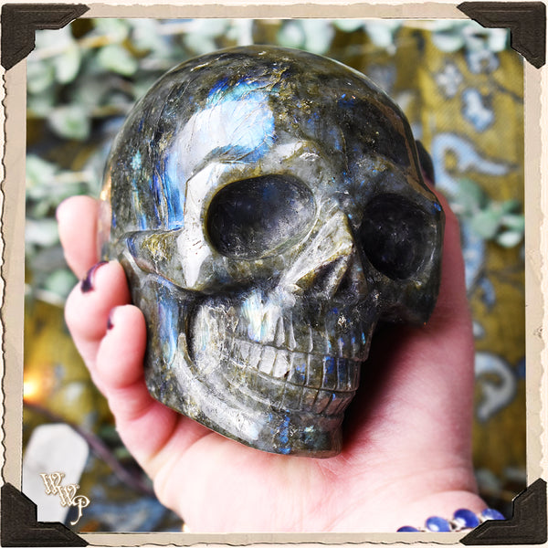 LIMITED EDITION: LABRADORITE CRYSTAL SKULL . For Moon Healing, Spiritual Strength & Psychic Enhancement.