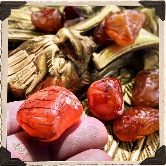 CARNELIAN TUMBLED CRYSTAL. For Positive Energy, Motivation & Courage.