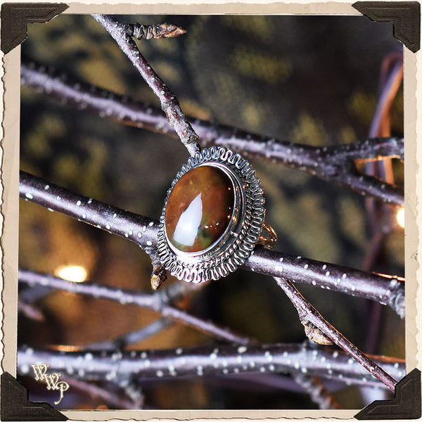 LIMITED EDITION : BLOODSTONE RING LARGE OVAL. For Grounding, Healing & Generosity. Sterling Silver. (SKU:D1508)