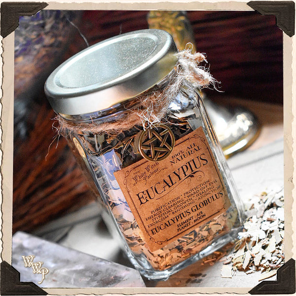 EUCALYPTUS LEAVES APOTHECARY. Dried Herbs. For Purification, Healing & Protection.