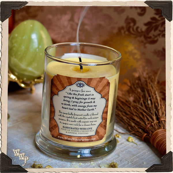 FERTILITY Elixir Apothecary CANDLE 7oz. For Creation, New Beginnings & Abundant Opportunities.