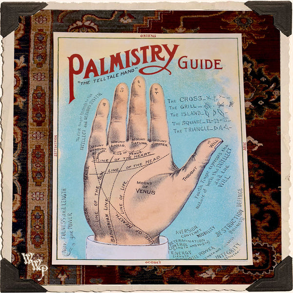 ' PALMISTRY ' PALM READER POSTER. Vintage Style Print For Sacred Space Decor
