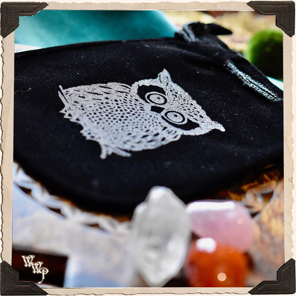 VELVET OWL POUCH. Witch's Keepsake Bag.