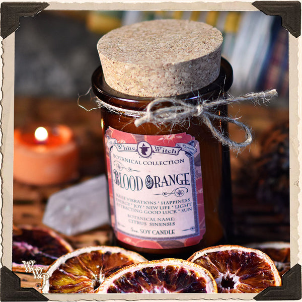 BLOOD ORANGE CANDLE APOTHECARY 5oz. For Sun Magick, Cheer & Renewal.