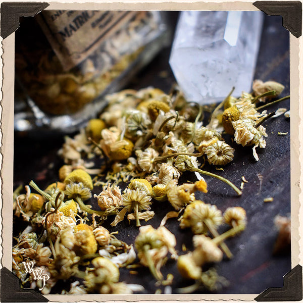 CHAMOMILE FLOWER APOTHECARY. Dried Herbs. For Calming, Peace & Blessings.