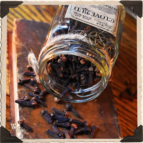 CLOVE BUD APOTHECARY. Dried Herbs. For Stopping Gossip, Protection & Power.