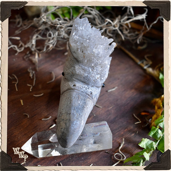 GOSHAWK CLEAR QUARTZ Cluster Animal Totem. For Energy Amplification, Bravery & Spiritual Awareness.