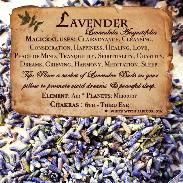 LAVENDER BUDS APOTHECARY. Dried Herbs. For Relaxation, Divination, Meditation & Sleep.