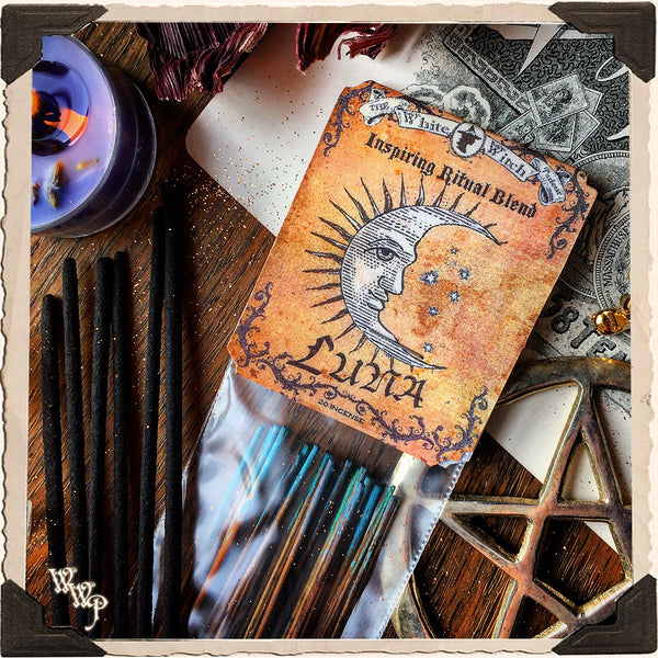 LUNA RITUAL INCENSE. 20 Sticks. Blessed by Amethyst & Bloodstone. For Inspiration & Healing.