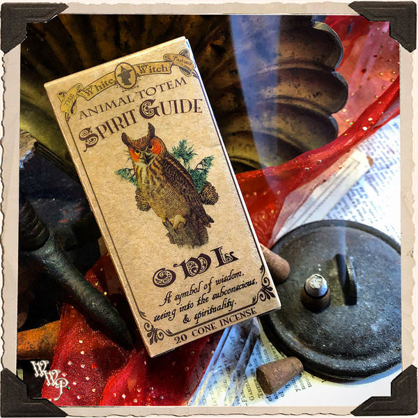 OWL CONE INCENSE. Animal Totem for Wisdom, Spiritual Sight & Spirituality.