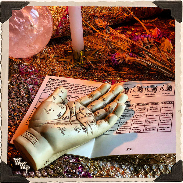 PALMISTRY HAND & INFORMATION BOOKLET KIT. For Fortune Telling & Life Path Guidance.