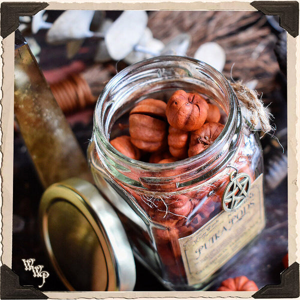PUTKA PODS APOTHECARY. Dried Herbs. For Warmth, Comfort & Family Togetherness.