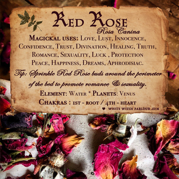 RED ROSE BUDS APOTHECARY. Dried Herbs. For Love, Trust & Innocence.