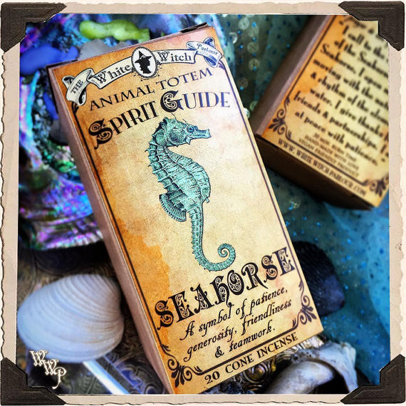 SEAHORSE Animal Totem Cone INCENSE. Aquamarine & Moonstone. For Patience, Generosity & Friendship.