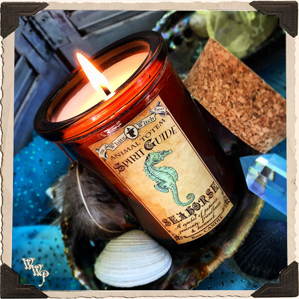 SEAHORSE Animal Totem CANDLE Apothecary 6oz. All Natural. Aquamarine & Moonstone. For Patience, Generosity & Friendship.