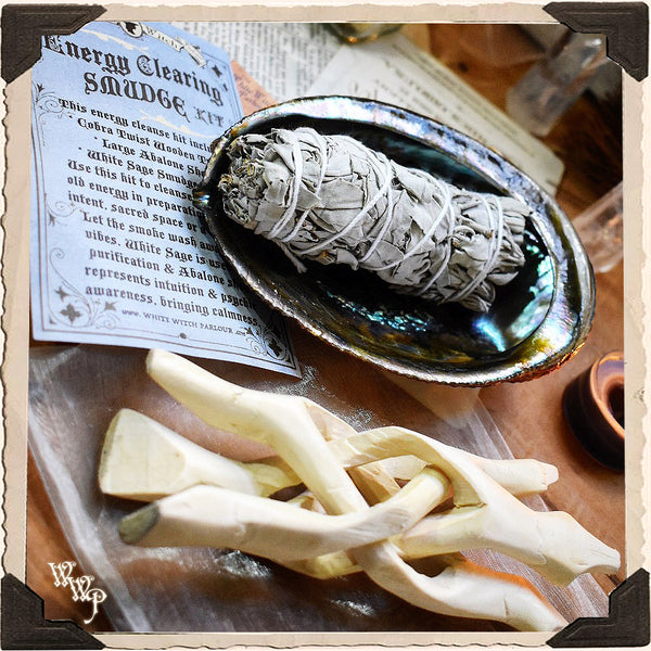 SMUDGE KIT: White Sage & Abalone Shell For Spiritual Cleansing