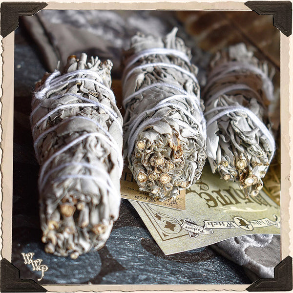 SMUDGE WANDS: WHITE SAGE 3 Pack For Spiritual Cleansing, Purification, Wishes, Divination & Meditation.