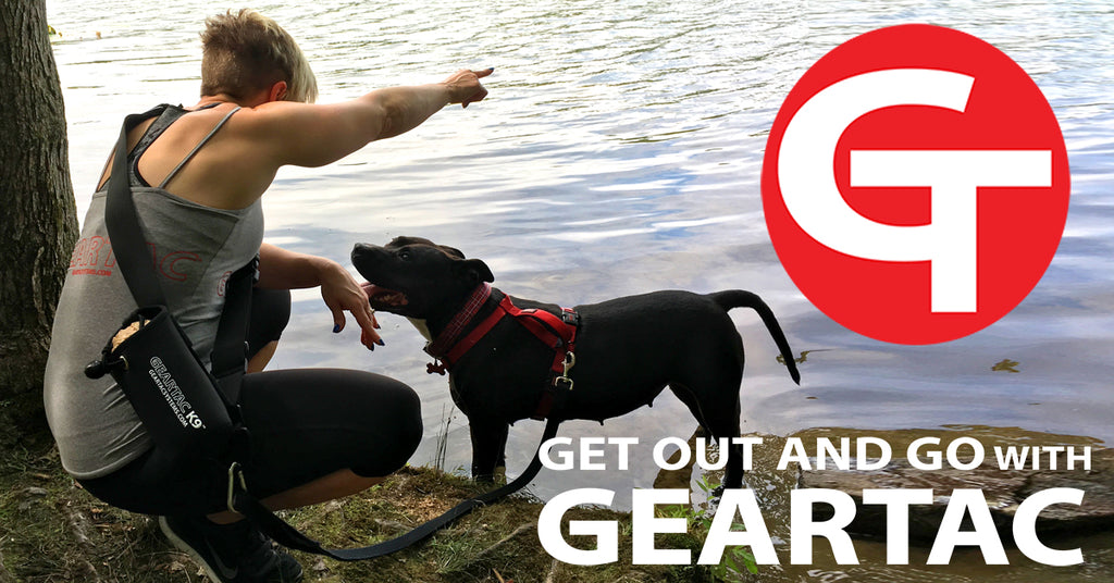 geartac k9 hands free dog walking device
