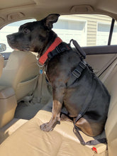 Load image into Gallery viewer, geartac auto belt seatbelt restraint system for your dog