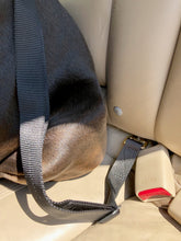Load image into Gallery viewer, geartac auto belt seatbelt restraint system is easily adjustable for any size dog